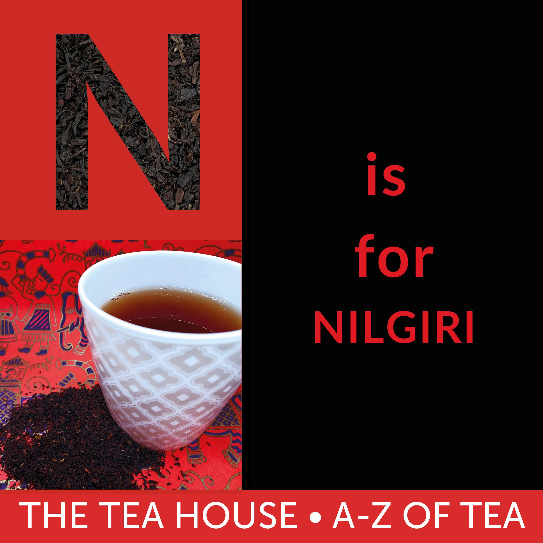N is for Nilgiri