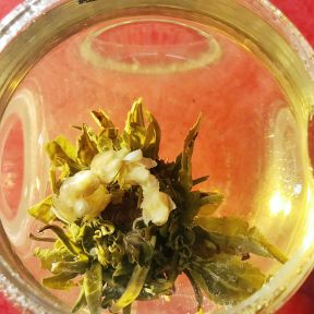 Jasmine Garland Flowering Tea